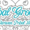 Tribal Grooves® in Portland — Noon on Wed! Winter class with Paulette